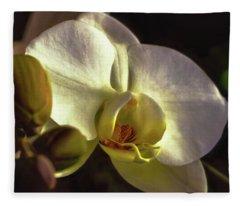 Orchid Glow Fleece Blanket