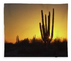 Organ Pipe Cactus Fleece Blanket
