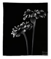 Orinoco Chrysanthemum Fleece Blanket