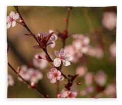 Purple Leaf Sandcherry Blossoms 2 Fleece Blanket