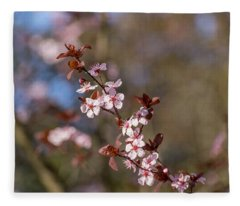 Purple Leaf Sandcherry Blossoms Fleece Blanket