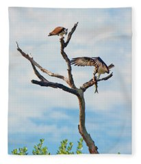 Osprey Feast Fleece Blanket