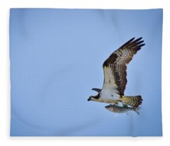 Osprey With Rockfish Fleece Blanket