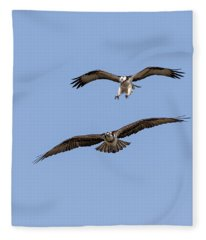 Ospreys 2018-1 Fleece Blanket