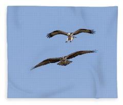 Ospreys 2018-1 Fleece Blanket
