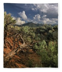 Out On The Mesa 2 Fleece Blanket