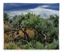Out On The Mesa 3 Fleece Blanket