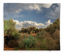 Out On The Mesa 4 Fleece Blanket