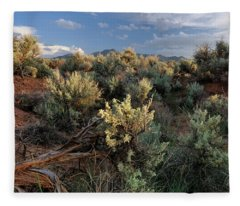 Out On The Mesa 7 Fleece Blanket