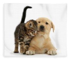 Over Friendly Kitten Fleece Blanket