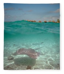 Over-under Water Of A Stingray At Bora Bora Fleece Blanket