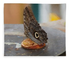 Fleece Blanket featuring the photograph Owl Butterfly-1 by Paul Gulliver