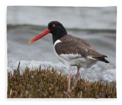 Oyster Catcher Fleece Blanket
