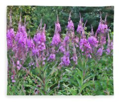 Painted Fireweed Fleece Blanket