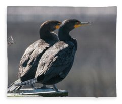 Pair Double-crested Cormorant 3 March 2018 Fleece Blanket