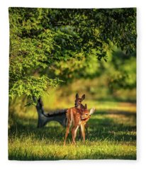 Pair Of Baby Deer Fleece Blanket