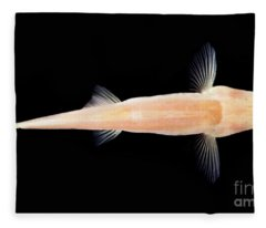 Palace Of The Dragon God Cave Loach Fleece Blanket