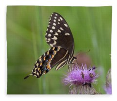 Palamedes Swallowtail And Friends Fleece Blanket