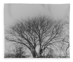 Pale Shades Fleece Blanket