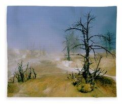Palette Spring Fleece Blanket