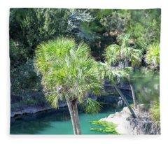 Palm Tree Blue Pond Fleece Blanket