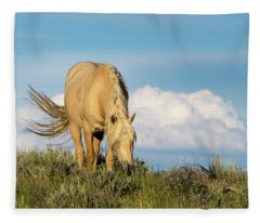 Palomino Wild Stallion In The Evening Light Fleece Blanket