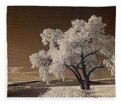 Palouse Fleece Blanket