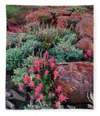 Panoramic Lemmons Paintbrush Minarets Eastern Sierras California Fleece Blanket