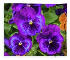 Pansies In Purple And Blue Fleece Blanket
