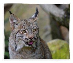 Panting Lynx Fleece Blanket