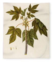 Papaya Tree Fleece Blanket