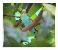 Parakeet Fleece Blanket