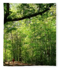 Paris Mountain State Park South Carolina Fleece Blanket