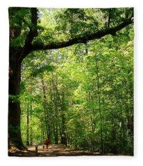 Paris Mountain State Park South Carolina Fleece Blanket