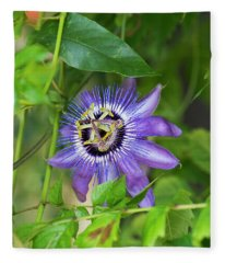 Passion Flower Betty Myles Young Fleece Blanket