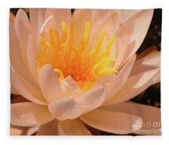 Pastel Pleasures  Fleece Blanket