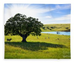 Rural Landscape Fleece Blankets