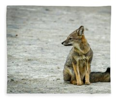 Patagonia Fox - Argentina Fleece Blanket