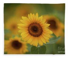 Patch Of Sunflowers Fleece Blanket