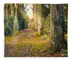Path Into The Light Fleece Blanket
