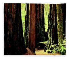 Path Through The Forest Edge . 7d5432 Fleece Blanket
