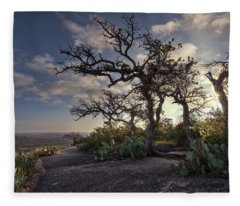 Fleece Blanket featuring the photograph Pathway On Top Of Enchanted Rock by Todd Aaron
