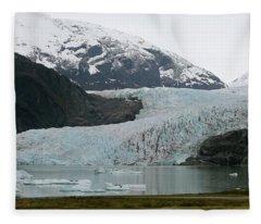 Pathway To An Icy Wonderland Fleece Blanket