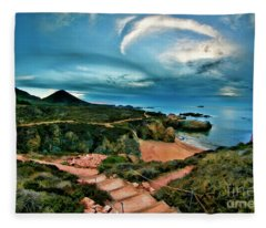 Pathway To Garrapata State Park Fleece Blanket
