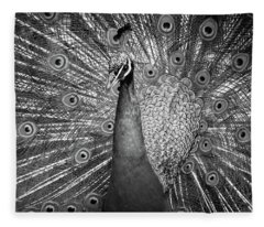 Peacock In Black And White Fleece Blanket
