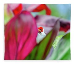 Peeking Between The Leaves Fleece Blanket