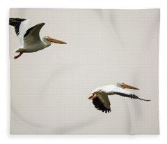 Pelicans 6498-113017-2cr Fleece Blanket