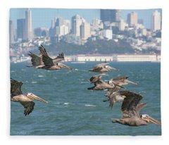 Pelicans Over San Francisco Bay Fleece Blanket