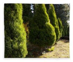 Pencil Pine Trees Fleece Blanket