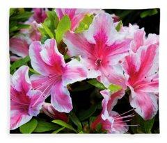 Peppermint Candy Fleece Blanket